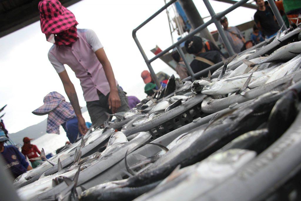 แรงงานข้ามชาติพม่าในภาคการประมง