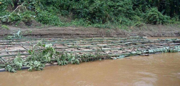 ประจานความล้มเหลวรัฐ พบอีกซุงเถื่อน 180 ท่อนลอยล่องในแม่น้ำสาละวิน เชื่อตัดในฝั่งไทยเขตรอยต่อเขตป่าอนุรักษ์แต่พยายามบิดเบือนให้เป็นไม้ฝั่งพม่า