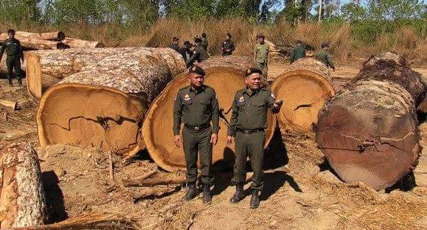 องค์กรพิทักษ์สัตว์กัมพูชา MOU ร่วมรัฐบาล-ชุมชน ปลูกต้นไม้ฟื้นฟูป่า พร้อมหนุนสร้างนโยบายให้ชนพื้นเมืองมีบทบาทอนุรักษ์ป่าชุมชน