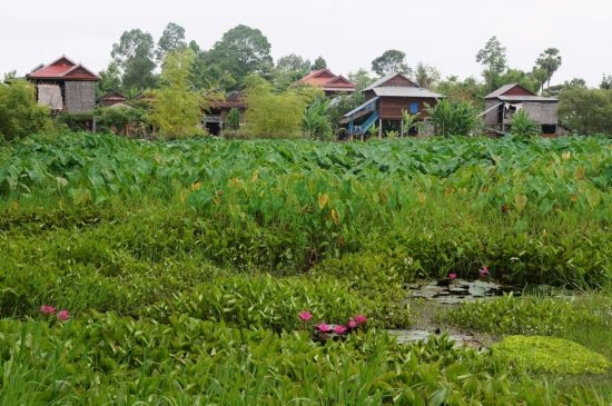 บึงหน้าแล้งและหมู่บ้านเติงเปรยเฮิม