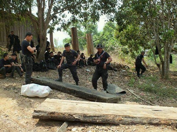 salween deforest9